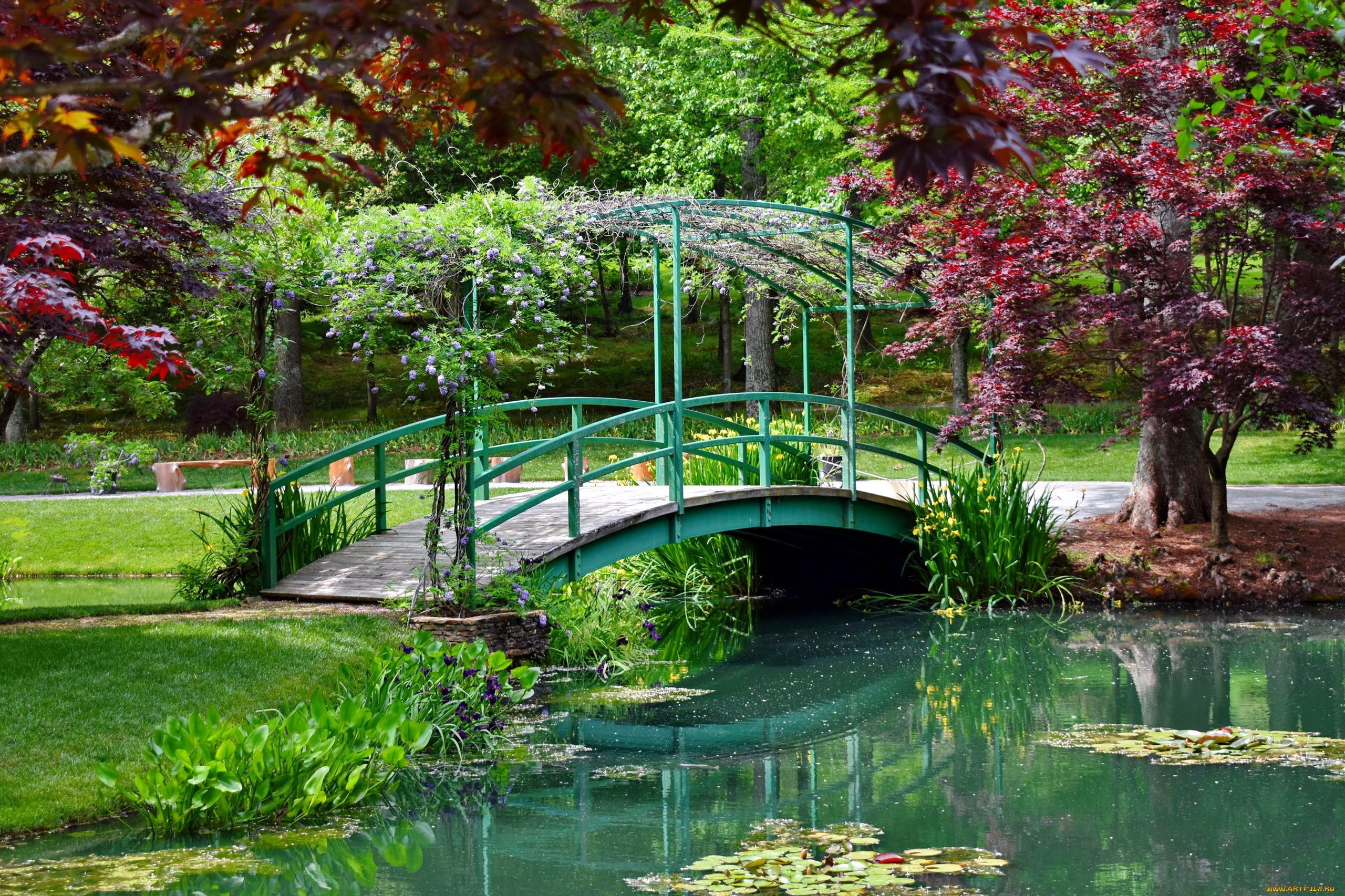 Цветные фотографии красивых мостиков в парках